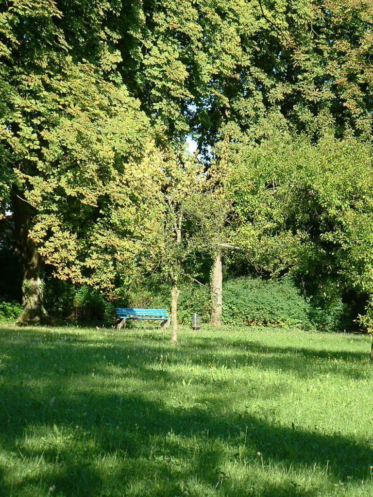 ein Blick in unseren Park